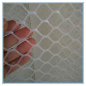 Excellent Quality Poultry Net (XB-PLASTIC-0015) pictures & photos