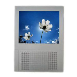 10 Inch LCD Advertising Display (HA104B) pictures & photos