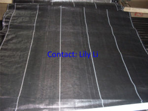 Weed Control Mat for Garden or Greenhouse pictures & photos