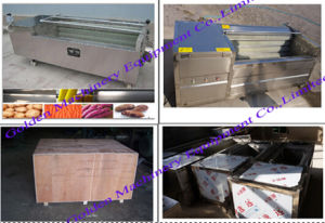 Industrial China Brush Type Root Vegetable Washing Peeling Machine pictures & photos