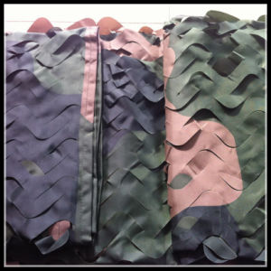 Army Camouflage Netting pictures & photos