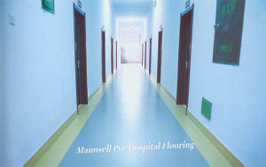 Indoor Medical / Hospital with PVC / Vinyl Material Flooring pictures & photos