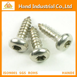 Stainless Steel Torx Pan Head Security Self Fasteners Tapping Screw pictures & photos