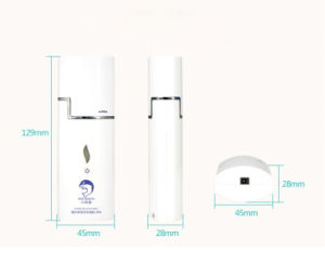 Portable Nano Skin Handy Mist Spray pictures & photos