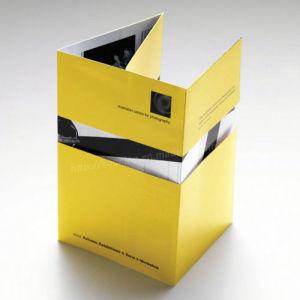Business Video Brochure, Handbooks, 2.4/2.8/4.3/5/7/10.1 Inch pictures & photos