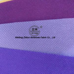 Economic PP Spunbond Nonwoven Fabric pictures & photos