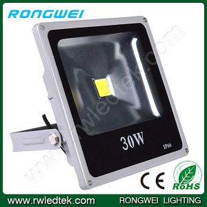 Park/Square/Garden IP65 30W Pure White LED Flood Light