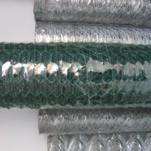 Electro Galvanized Hexagonal Chicken Wire Mesh Manufacture (factory price) pictures & photos