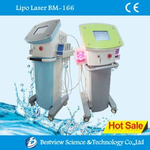 Vertical Lipolaser Machine