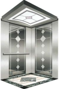 Italy Professional Home Hydraulic Villa Elevator (RLS-114) pictures & photos
