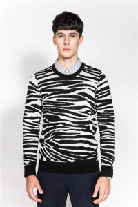 New Sale Wool Crew Neck Jacquard Knit Men Sweater pictures & photos