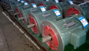 Ie2 Three-Phase Electrical Motor (TEFC, IP55) pictures & photos