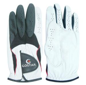 Men′s Cabretta Golf Glove (CGL-42) pictures & photos