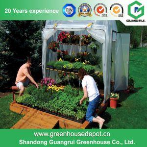 Hobby Greenhouse for Garden Backyard pictures & photos