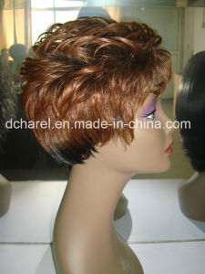 Factory Price for Human Hair Wig pictures & photos