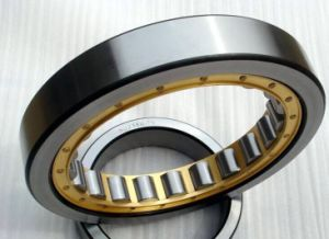 Factory Sell SKF Nu238 Cylindrical Roller Bearing pictures & photos
