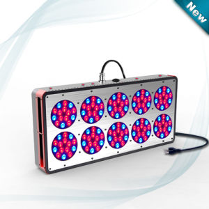 Apollo 10 450W Greenhouse LED Grow Light pictures & photos