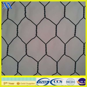 PVC Coated Gabion Wire Mesh (XA-GM016) pictures & photos