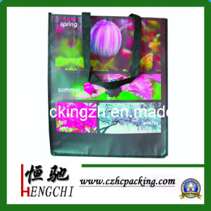 Non Woven Bags for Promotion pictures & photos