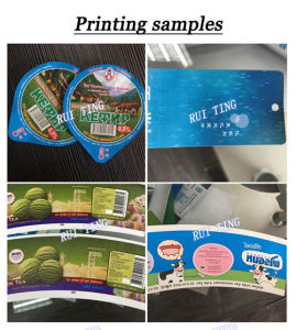 Rtry-480e Five Color Self Adhesive Label Flexo Printing Machinery pictures & photos