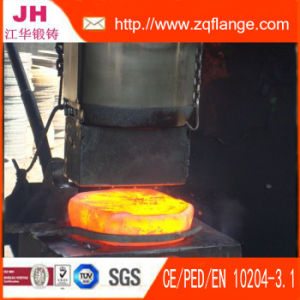 Ss41 Flange DIN2576 Pn10 Dn80 pictures & photos
