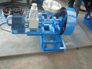 Offer 5% Discounting Fish Feed Extrusion Machine pictures & photos