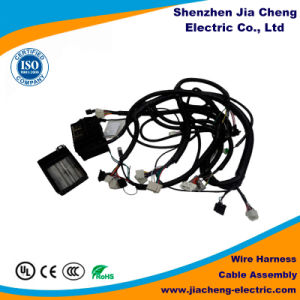 Wire Connector Female Wiring Harness AMP pictures & photos