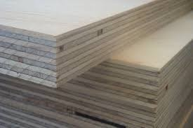 25mm Birch Face E2 Glue Combi Core Plywood pictures & photos