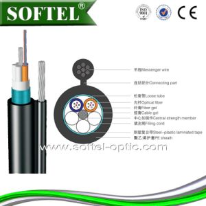 Optic Fiber Cable Fiber Optic Cable GYTC8S Cable pictures & photos