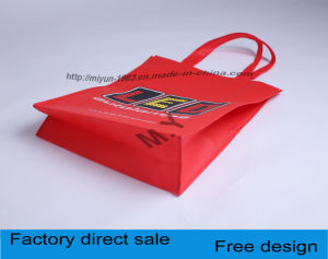Color Multicolor Printing Non-Woven Shopping Bags, Gift Bags. pictures & photos