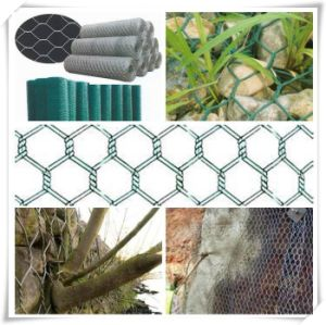 PVC Coated Hot Dipped Galvanized Hexagonal Wire Mesh pictures & photos