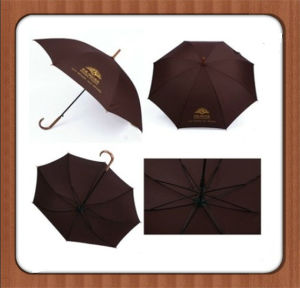24 Inch Promotional Umbrella (BR-ST-124) pictures & photos