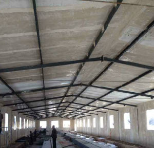 Professional Design Automatic Commerical Prefabricated Steel Structure Poultry Chicken House pictures & photos