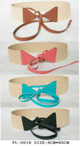 Fashion Elastic Belt Fl-0519