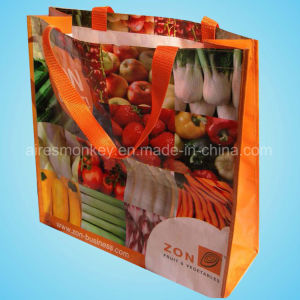 Recycled Custom Printing Grocery Tote Shopping PP Woven Bag pictures & photos