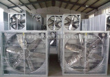 Heavy Hammer Exhaust Fan for Poultry with Ce Certificate pictures & photos