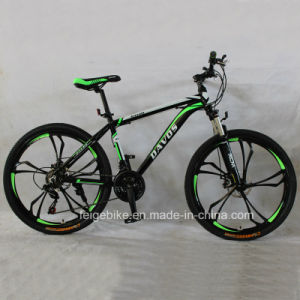 Hot Sale MTB Aluminum Alloy Mountain Bike (FP-MTB-A078) pictures & photos