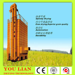 Biomass Broomcorn Drying Machinery pictures & photos