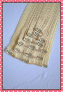 European Straight Human Remy Hair Clip in Extensions Hh-Ci20L pictures & photos