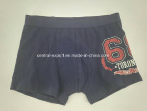 Water Print Children Underwear Boy Boxer Short Boy Brief pictures & photos