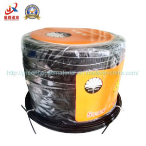Plastic Film Greenhouse in Film Wire pictures & photos