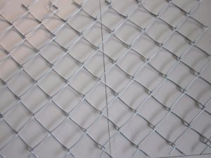 Chain Link Fence for Africa Market pictures & photos