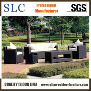 Leisure Sofa Set/Rattan Furniture Set/ Rattan Sectional Sofa (SC-B1007) pictures & photos