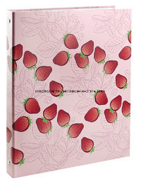 Professional Durable Ring Binder A4 for Office pictures & photos