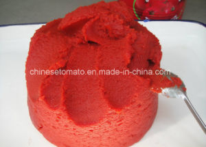 Tomato Paste Manufacturer Tomato Paste Export in China pictures & photos