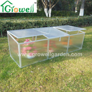 Cold Frame Mini Greenhouse for Young Plants Growing (F262) pictures & photos