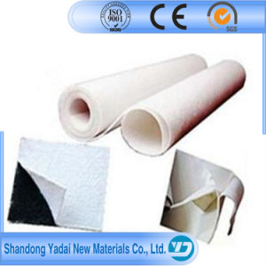 Ce Approved Compound Geomembrane Fabric for Sale pictures & photos