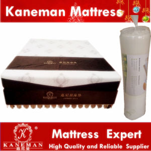 Super Market Portable Compressed Visco Elastic Memory Foam Mattress pictures & photos