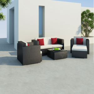 Garden Rattan Sofa pictures & photos
