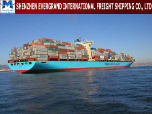 Sea Freight Door to Door From China to Brazil pictures & photos